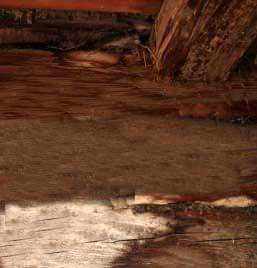 Una trave in legno con segni di deterioramento all'appoggio