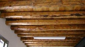 Vernici intumescenti per elementi in legno