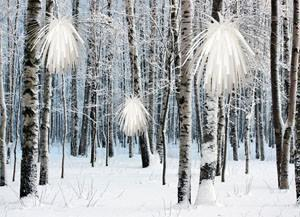 Mencke & Vagnby, Snowflower