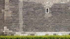 Comunione forzosa del muro