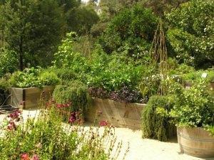 progettare un orto rialzato