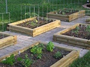 kitchen garden con prode rialzate