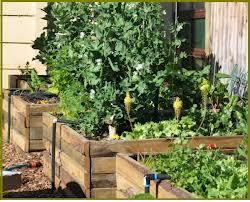Progettare un orto a prode rialzate for Cassoni per orto rialzato