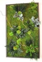 LinfaDecor. Quadro vegetale stabilizzato
