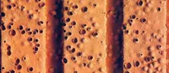 Un particolare del laterizio porizzato