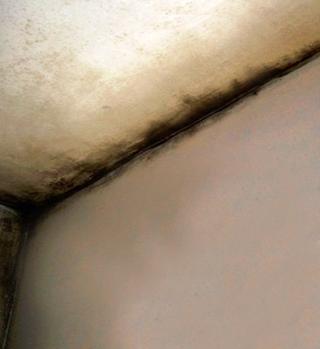 Gli effetti della condensa in presenza di ponti termici