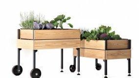 Organizzare terrazzo e giardino per l'estate