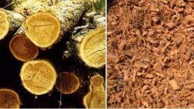 I materiali più utilizzati in bioedilizia e bioarchitettura: legno e sughero