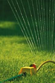 Irrigazione del prato