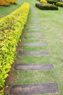 percorso con tappeto erboso