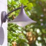 Philips cedar lampada da parete per esterno