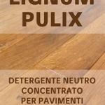 Detergente concentrato a bassa schiumosità LIGNUM PULIX