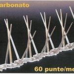 Alastop basic policarbonato cm50