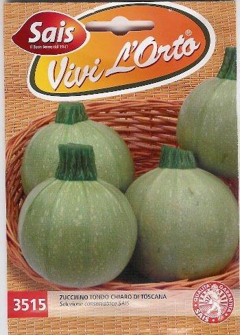 Zucchino tondo chiaro di toscana 1