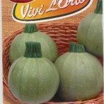 Zucchino tondo chiaro di toscana