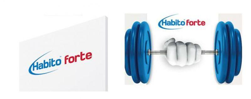 Lastra di gesso rivestito Habito Forte 1