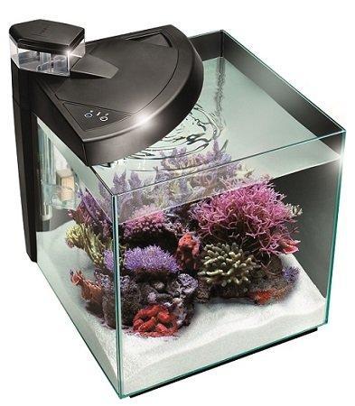 New more 30r acquario marino 1