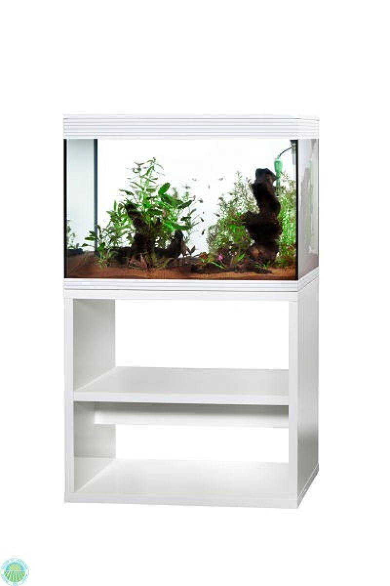Acquario Askoll Pure xl high cube da 130 litri 2
