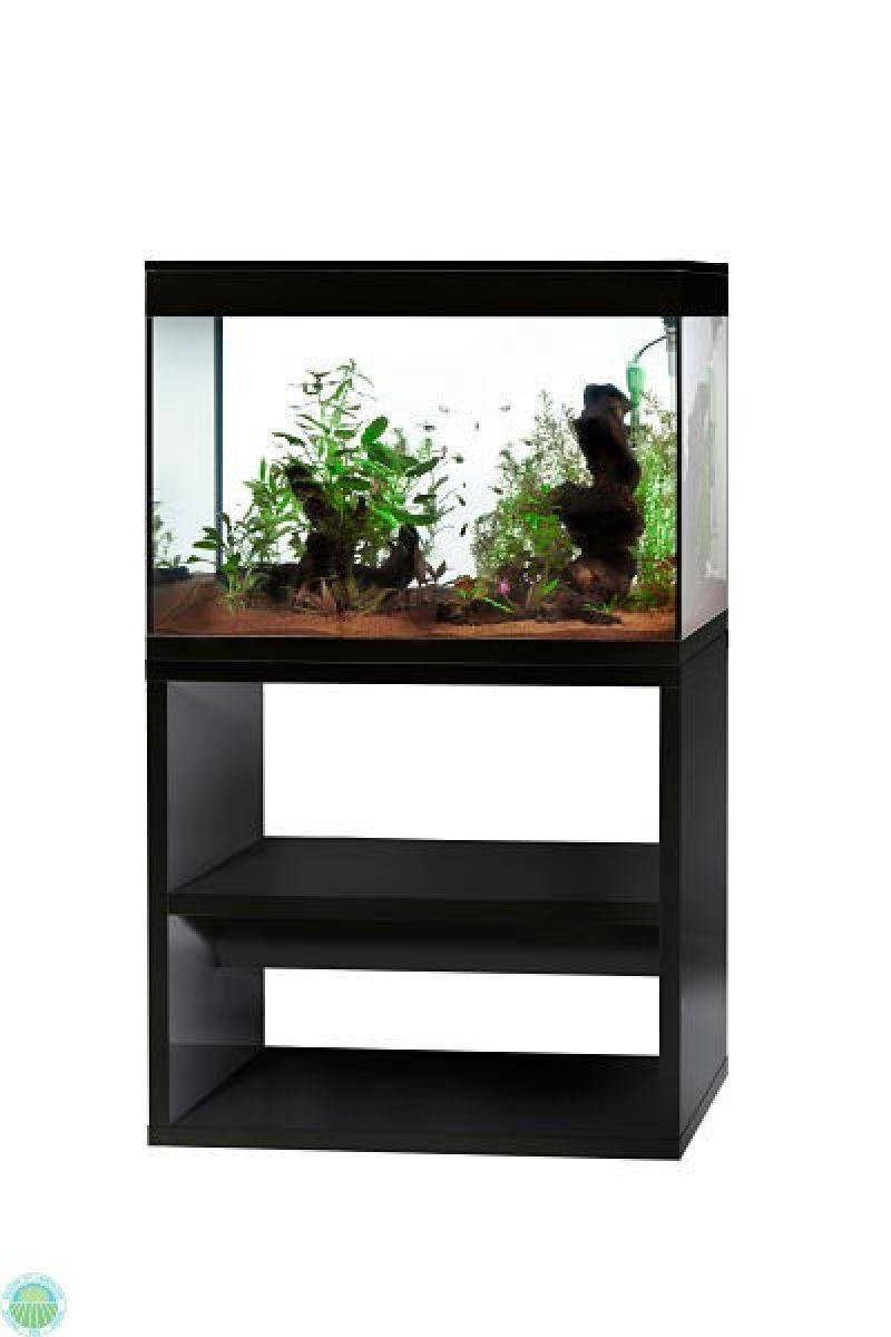 Acquario Askoll Pure xl high cube da 130 litri 3
