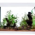 Acquario Askoll Pure xl high cube da 130 litri