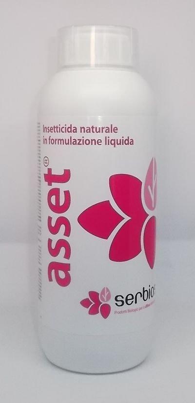 Asset insetticida naturale in formulazione liquida 1 1