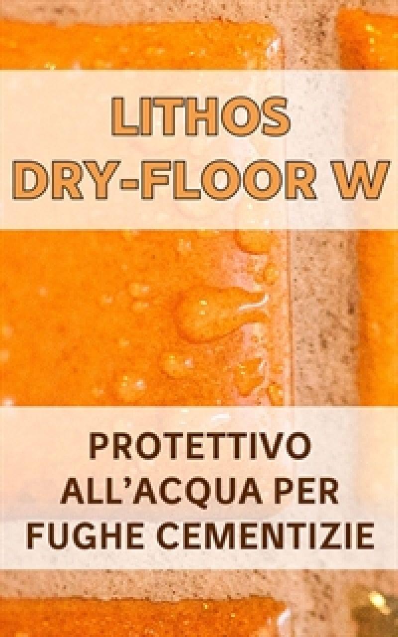 Protettivo per fughe cementizie LITHOS DRY-FLOOR W 1