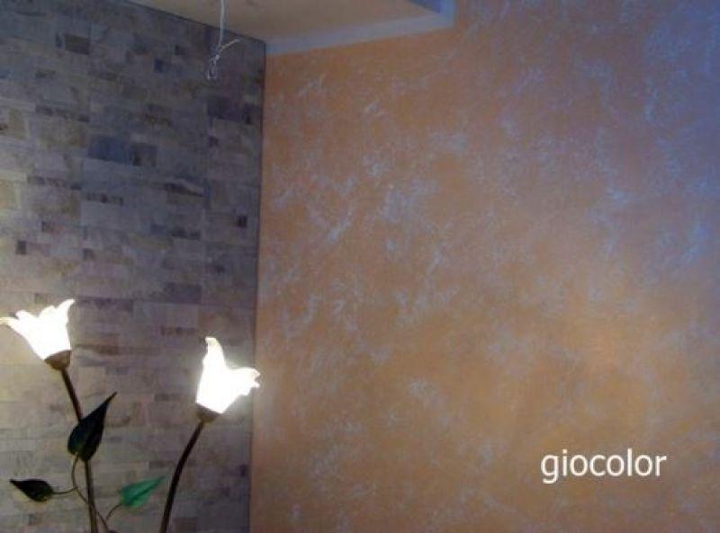 Terre Fiorentine - 2907190 4