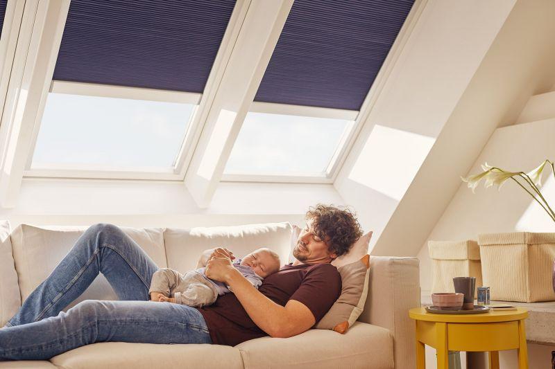 Finestra per tetti VELUX a bilico manuale 6