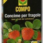 Compo concime per fragole kg1