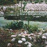 Prezzo laghetti artificiali - Laghetti artificiali giardino ...