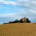 Alba adriatica appartments